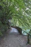 Walking path around Lake Bled Stock Photography