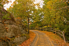 Walking Path in Autumn Stock Photography