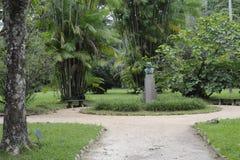 Walking path in botanical garden of Rio de Janeiro, Brazil. Stock Images