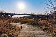 Walking path with bridge and sun nearby a stream in Seoul Royalty Free Stock Image