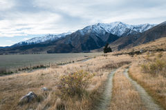 Walking Path in Castle Hill in cloudy day, New Zealand. Walking Path in Castle Hill Reservation area in cloudy day, New Zealand stock photo