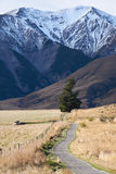 Walking Path in Castle Hill, New Zealand Stock Photography