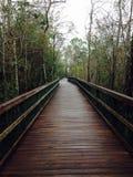 Walking path stock photo