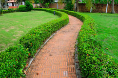 Walking path in a garden Stock Images