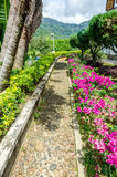 Walking path in the garden. Beautiful view of Walking path in the garden Royalty Free Stock Images