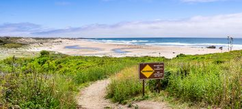 Walking path going through green shrubs towards a sandy beach; sign warning of Recurring Rip Currents posted on the trail; Gazos. Creek Año Nuevo State Park stock image