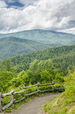 Walking Path Great Smoky Mountains National Park NC Stock Images