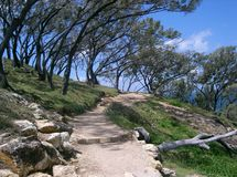 Walking path, headland Point Lookout Stradbroke Is Stock Photo