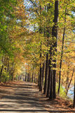 Walking path in Lake johnson park of Raleigh, NC. During fall season Stock Photography