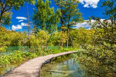 Walking path through the lake in the Plitvice Royalty Free Stock Photos