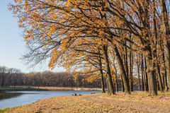 Walking path in the lake side, autumn Stock Photography