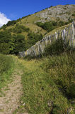 Walking path lined by picket fence in the English peak district. Portrait stock image