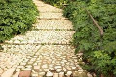 Walking path in a lush garden Stock Photos