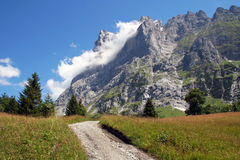 Mountain landscape with path, meadow with view on high mountains in Switzerland. Meadows, open field, with walking path and beautiful view on the high mountains royalty free stock photos