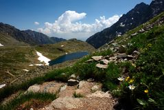 Walking path in mountains with lake and flowers Royalty Free Stock Photography