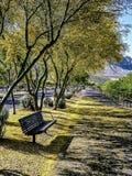 Walking Path Oro Valley Arizona royalty free stock image