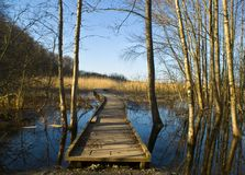 Walking path over water Royalty Free Stock Photo