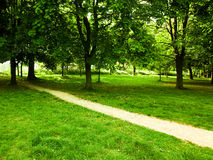 Walking path through park. A dirt walking path in a quiet, wooded park Stock Photography