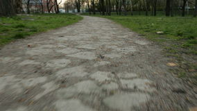 Walking path in the park stock footage
