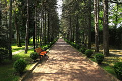Walking path in the park Royalty Free Stock Photography