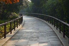 Park walking path. A walking path in a park with trees and plants Royalty Free Stock Photos