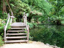 Walking path and pond - Alfred Nicholas Gardens royalty free stock photography