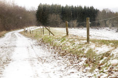 Walking path with snow in beautiful landscape Royalty Free Stock Images