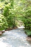 Walking Path Through Sunny Garden royalty free stock photos