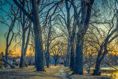Walking path at sunrise in winter Stock Photo
