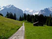 Walking path into the swiss alps Royalty Free Stock Photography
