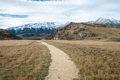 Walking Path to Cave Stream Scenic Reserve, South Island, New Ze Stock Photos