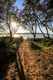Sandy path leading to sun rising over beach. Walking path to Ocean Beach at Umina, Australia with sun shining over the ocean and beach stock images