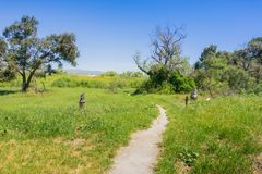 Walking path in Ulistac Natural Area, Santa Clara, south San Francisco bay area, California royalty free stock photography