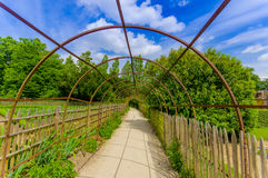 Walking path in Versailles gardens, France Stock Photography