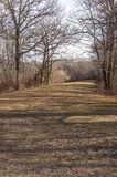 Walking path through wetlands in New England park Royalty Free Stock Image