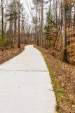 Walking Path Through Winter Woods Stock Image