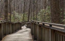 Walking path on wood boardwalk thru woods Stock Photo