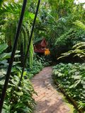 Walking pathway through Jim Thompson`s residence royalty free stock images