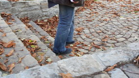 Walking on a paved alley Royalty Free Stock Image