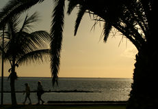 Walking people. Silhouette of two walking people at sunset beach (Tenerife, Spain Stock Images