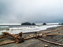 Walking people on the beach of La Push stock photos