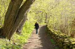 Walking photographer. Photographer walks in a beautiful footpath in springtime Stock Photos