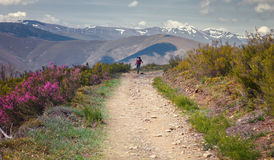 The walking of a pilgrim on a hard stage, Way of St. James, Leon, Spain Stock Images