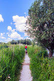 Walking in the polder. Stock Photo
