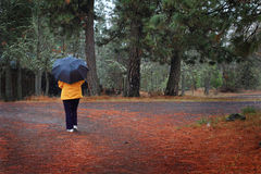 Walking in rainy country stock photos
