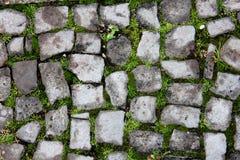 Walking road brick. In Klaipeda, Luthuania Royalty Free Stock Photos