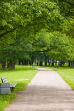 Walking road in summer park. Bulk footpath for walks on green park Stock Photo