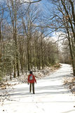 Walking on Road/Winter/Snow Royalty Free Stock Images