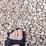 Walking on round gravel seashore Royalty Free Stock Photo