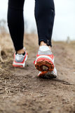 Walking or running legs sport shoes. Fitness and exercising in autumn or winter nature Royalty Free Stock Photos